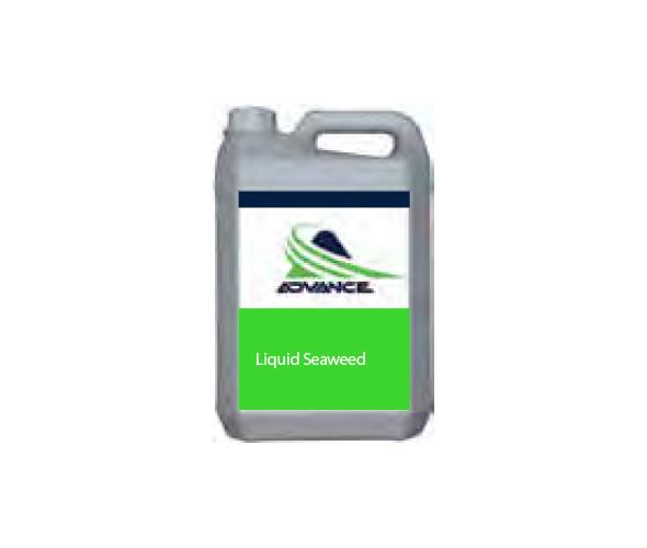 advance-liquid-seaweed-product