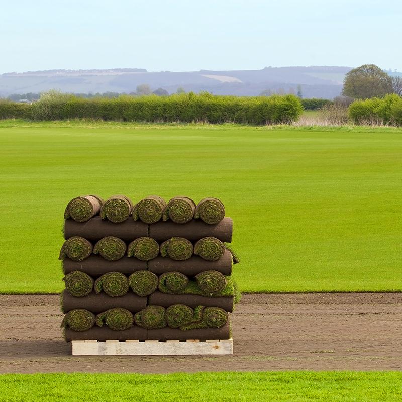 rolls of turf