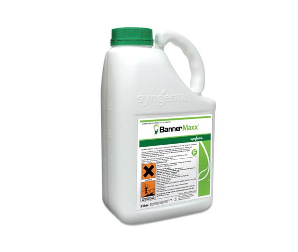 bannermaxx-product