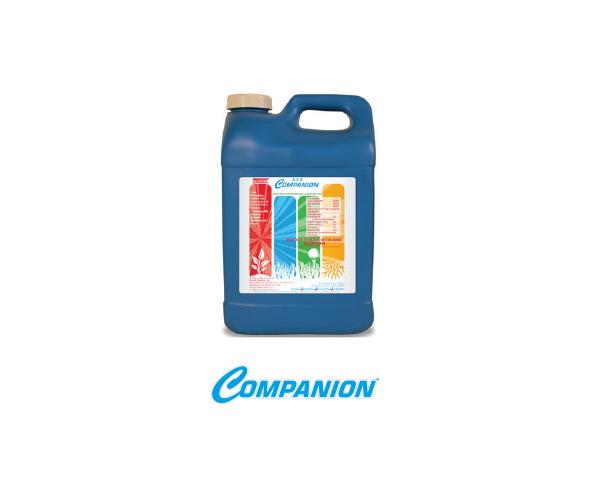 companion-product
