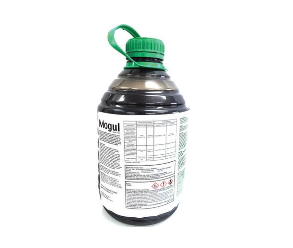 mogul-product