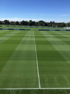 Football Pitch Turf AGS Fertilisers Nutrition Biostimulants Turf