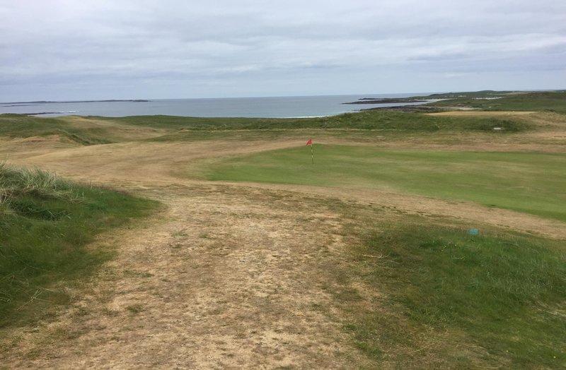 golf_green_moisture_drought AGS fertiliser biostimulant surfactant